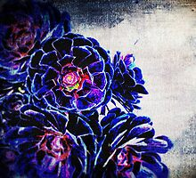 Succulence Two by SianStargazer