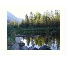 BEAVER POND ON THE BOULDER Art Print