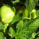 Green, Green Vegatables Of Home by WildestArt