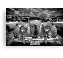 Vintage Shine Canvas Print