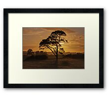Feel The Warmth Framed Print