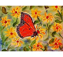 Monarch in the flowers, revised, watercolor Photographic Print