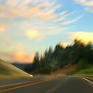 into the open road - II by gabryshak
