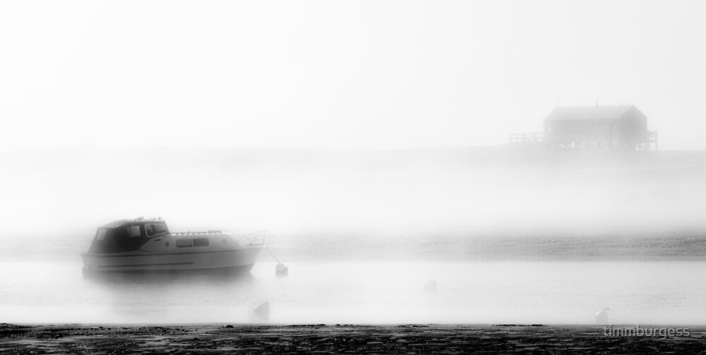 Merging from the Fog by timmburgess