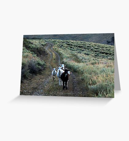 Is This The Way To Go Home? Greeting Card