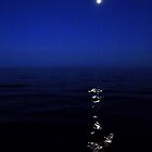 Moon Over Lake Ontario by Ken Hill