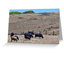 Happy California Cows Greeting Card
