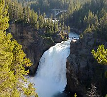 Upper Falls of Yellowstone by Rachel Meyer