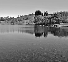 Tarn Hows, The Lake District by Astrid Ewing Photography