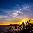 SEASCAPES : Cornwal UK.  by AndyReeve