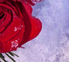 Winter Love Sticker