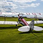 De Havilland Biplane by TrueLoveOne