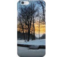 Ice Everywhere iPhone Case/Skin