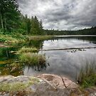 Lake on Gifford Peninsula by toby snelgrove  IPA