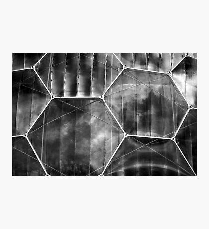 A Window on Eden Photographic Print