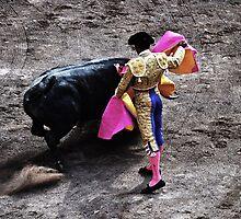 Matador by Harry Wakefield