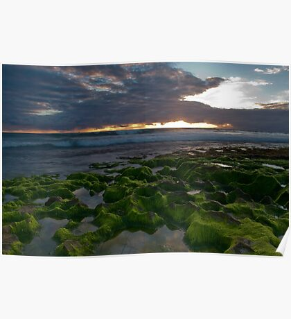 Seaweed Craters Poster