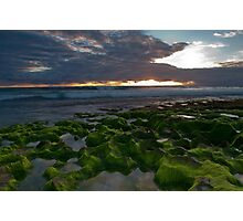 Seaweed Craters Photographic Print
