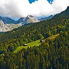 Summertime in the Alps (III) by Konstantinos Arvanitopoulos