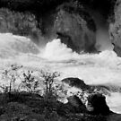 The Rhine Falls by bubblehex08