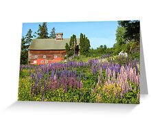 Wildflower Field and Red Barn   Greeting Card