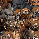 ANIMALS by Colin Van Der Heide