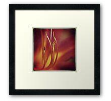 Hemerocallis Stamen Framed Print