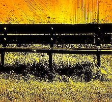 Sunny Bench by Stan Owen