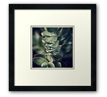 Hebe and Dewdrop Framed Print