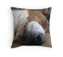 Shango sleeping Throw Pillow