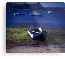Boats on a lake Metal Print