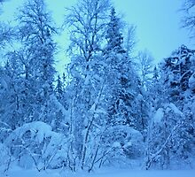one midwinter moment forever engraved in history by Sara Lindberg