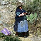 Peruvian woman and prickly pear by Maggie Hegarty