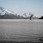 Steam On: Wakatipu by Adam Northam