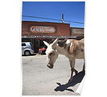 Route 66 - Oatman Arizona Poster