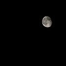 Moonsea I by Katherine Murray