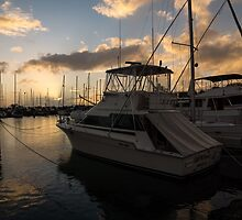 Lines, Masts and Clouds - Ala Wai Boat Harbor, Waikiki, Honolulu, Hawaii  by Georgia Mizuleva