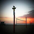 Volley Ball  by Rita  H. Ireland