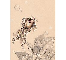 Flying FancyTail Mermouse Photographic Print