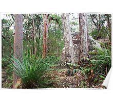 Bushland I Poster