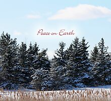 Peace on Earth (holiday greeting card) by photoclique