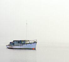 In the Fog by Julien Johnston