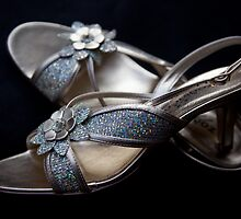 Cinderella's Shoes by Kylie  Sheahen