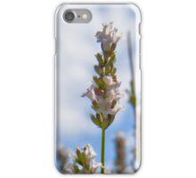 White Lavender iPhone Case/Skin