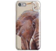 Hitchin' a Ride iPhone Case/Skin