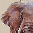 Animalia by Sarah  Mac