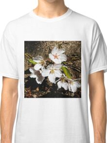 Cherry Blossoms on Tree Trunk Classic T-Shirt