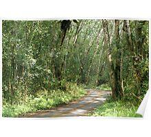 Road to Mauna Loa Poster