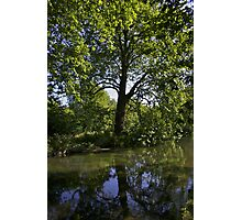 River Test Reflections Photographic Print