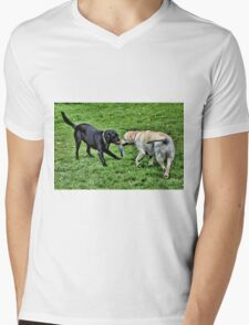 Frisbee Fun Mens V-Neck T-Shirt